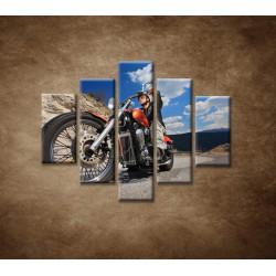 Obrazy na stenu - Motorkár - 5dielny 100x80cm
