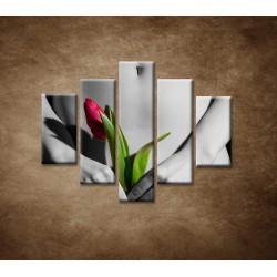 Obrazy na stenu - Dievča s tulipánom - 5dielny 100x80cm