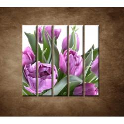 Obrazy na stenu - Nežné tulipány - 5dielny 100x100cm