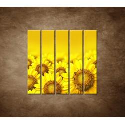Lúka slnečníc - 5dielny 100x100cm