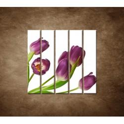Fialové tulipány - 5dielny 100x100cm