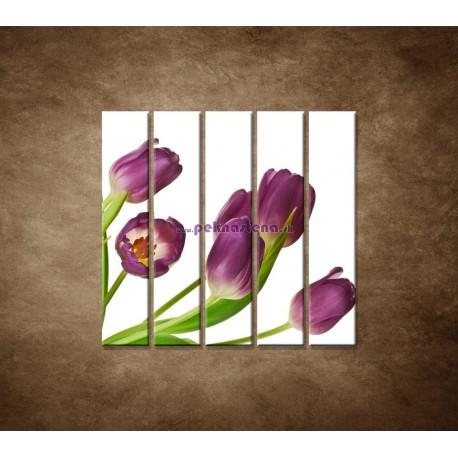 Obrazy na stenu - Fialové tulipány - 5dielny 100x100cm