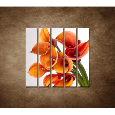 Obrazy na stenu - Oranžové kaly - 5dielny 100x100cm