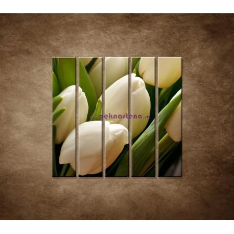 Obrazy na stenu - Kytica tulipánov - detail - 5dielny 100x100cm