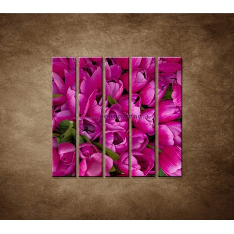Obrazy na stenu - Krásne tulipány - 5dielny 100x100cm