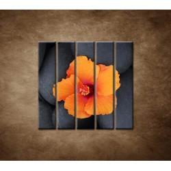 Obrazy na stenu - Oranžový ibištek na kameni - 5dielny 100x100cm