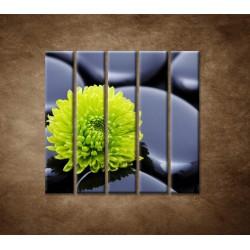 Obrazy na stenu - Žlto-zelený kvet - 5dielny 100x100cm