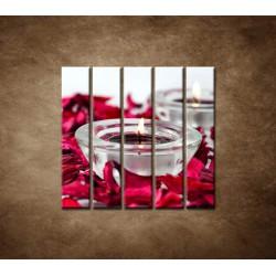 Obrazy na stenu - Aromaterapia - 5dielny 100x100cm