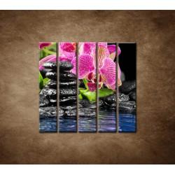 Obrazy na stenu - Kamene s kvetom - 5dielny 100x100cm