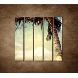 Obrazy na stenu - Palma - 5dielny 100x100cm