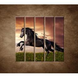 Obrazy na stenu - Čierny koň  - 5dielny 100x100cm