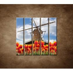 Obrazy na stenu - Mlyn s tulipánmi - 5dielny 100x100cm