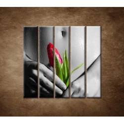 Obrazy na stenu - Mokré dievča s tulipánom - 5dielny 100x100cm