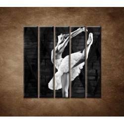 Obrazy na stenu - Baletka - 5dielny 100x100cm