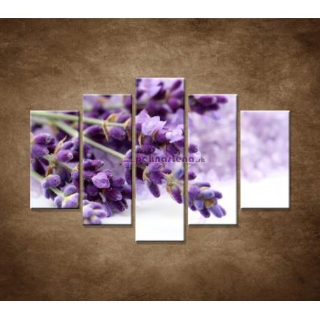 Obrazy na stenu - Kvet levandule - 5dielny 150x100cm