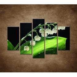 Obrazy na stenu - Konvalinka - 5dielny 150x100cm
