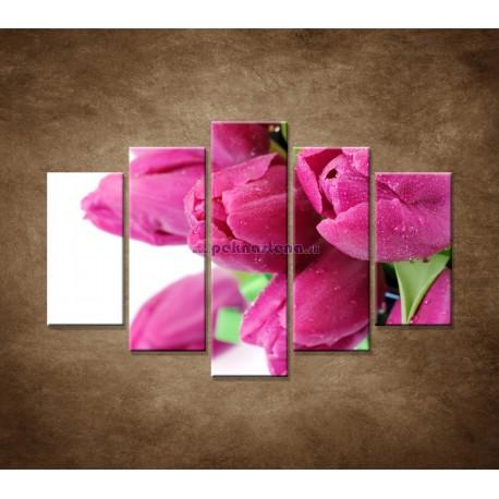 Obrazy na stenu - Tulipány - 5dielny 150x100cm