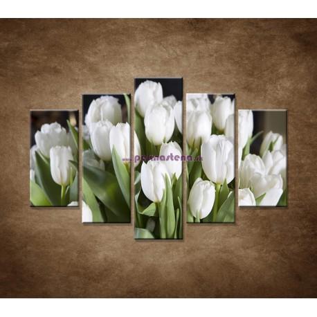Obrazy na stenu - Biele tulipány - 5dielny 150x100cm