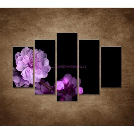 Obrazy na stenu - Čerešňový kvet - 5dielny 150x100cm