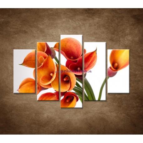 Obrazy na stenu - Oranžové kaly - 5dielny 150x100cm