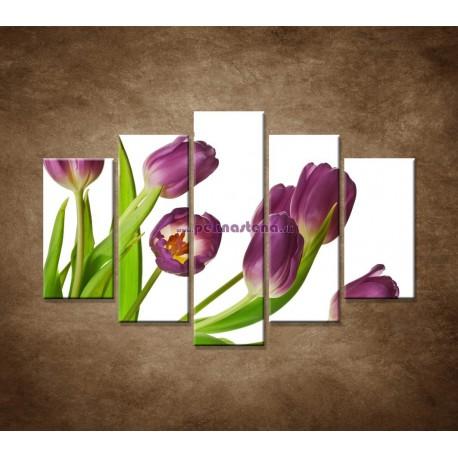 Obrazy na stenu - Fialové tulipány - 5dielny 150x100cm