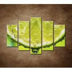 Obrazy na stenu - Plátok citróna - 5dielny 150x100cm