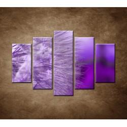 Obrazy na stenu - Makro - Púpava detail- 5dielny 150x100cm
