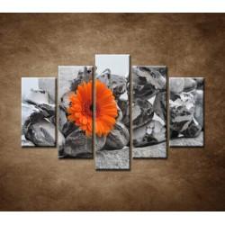Obrazy na stenu - Oranžová gerbera a kamene - 5dielny 150x100cm