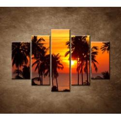 Obrazy na stenu - Západ slnka s palmami - 5dielny 150x100cm