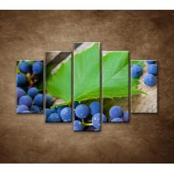Obrazy na stenu - Modré hrozno - 5dielny 150x100cm