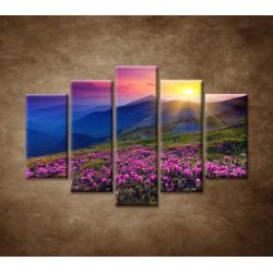 Obrazy na stenu - Západ slnka - 5dielny 150x100cm