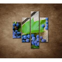 Obrazy na stenu - Modré hrozno - 4dielny 80x90cm