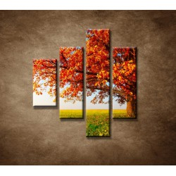 Obrazy na stenu - Jesenný dub - 4dielny 80x90cm