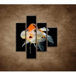 Obrazy na stenu - Rybka - 4dielny 80x90cm
