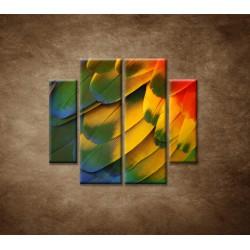 Obrazy na stenu - Farebné perie - 4dielny 100x90cm