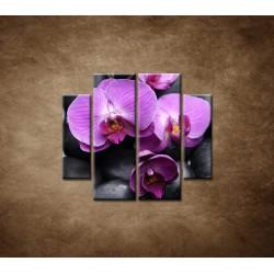 Obrazy na stenu - Ružové orchidey - 4dielny 100x90cm