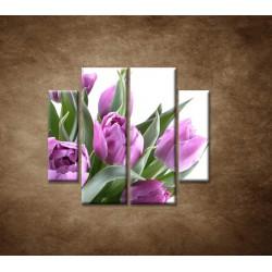 Obrazy na stenu - Nežné tulipány - 4dielny 100x90cm