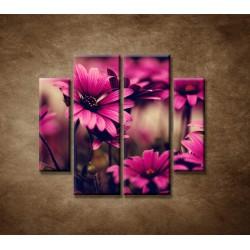 Obrazy na stenu - Ružové gerbery - 4dielny 100x90cm
