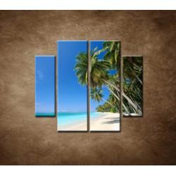 Obrazy na stenu - Pláž s palmami - 4dielny 100x90cm