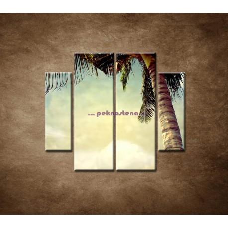 Obrazy na stenu - Palma - 4dielny 100x90cm