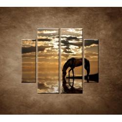Obrazy na stenu - Kôň pri jazere - 4dielny 100x90cm
