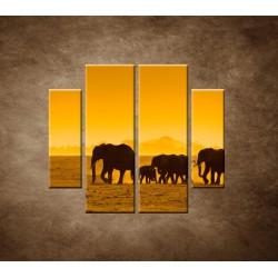 Obrazy na stenu - Slonia rodinka - 4dielny 100x90cm