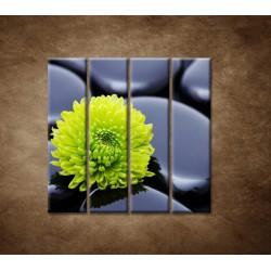 Obrazy na stenu - Žlto-zelený kvet - 4dielny 120x120cm