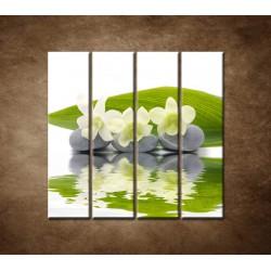 Obrazy na stenu - Biele kvety na kameňoch - 4dielny 120x120cm
