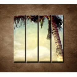 Obrazy na stenu - Palma - 4dielny 120x120cm