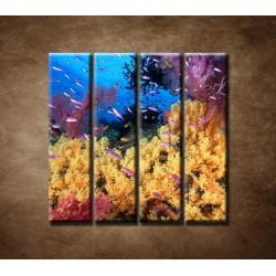 Obrazy na stenu - Korálový útes - 4dielny 120x120cm