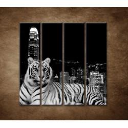Obrazy na stenu - Mestský tiger - 4dielny 120x120cm