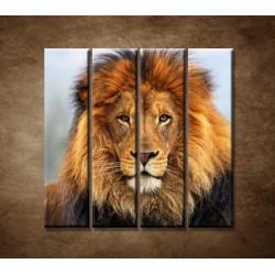 Obrazy na stenu - Leví kráľ - 4dielny 120x120cm