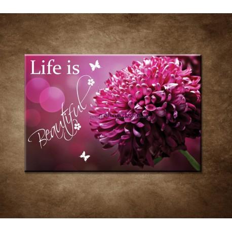 Obrazy na stenu - Life is beautiful