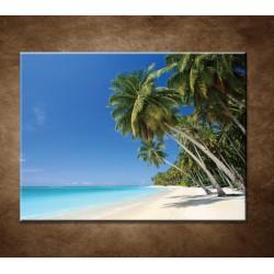 Obrazy na stenu - Pláž s palmami - 120x90cm - VÝPREDAJ!!!